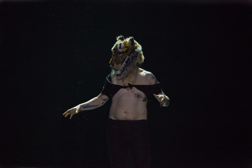 Julian Greis, Die Tragödie von Romeo und Julia, Thalia Theater, Regie Jette Steckel